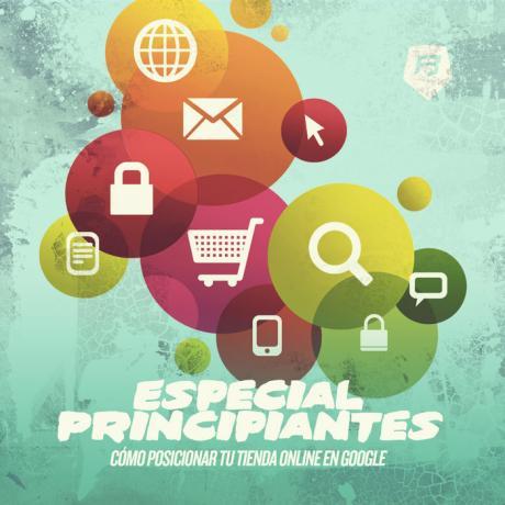 Especial Principiantes de SEO: Como posicionar una Tienda Online en Google